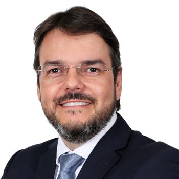 Fernando de Paula Gomes Ferreira