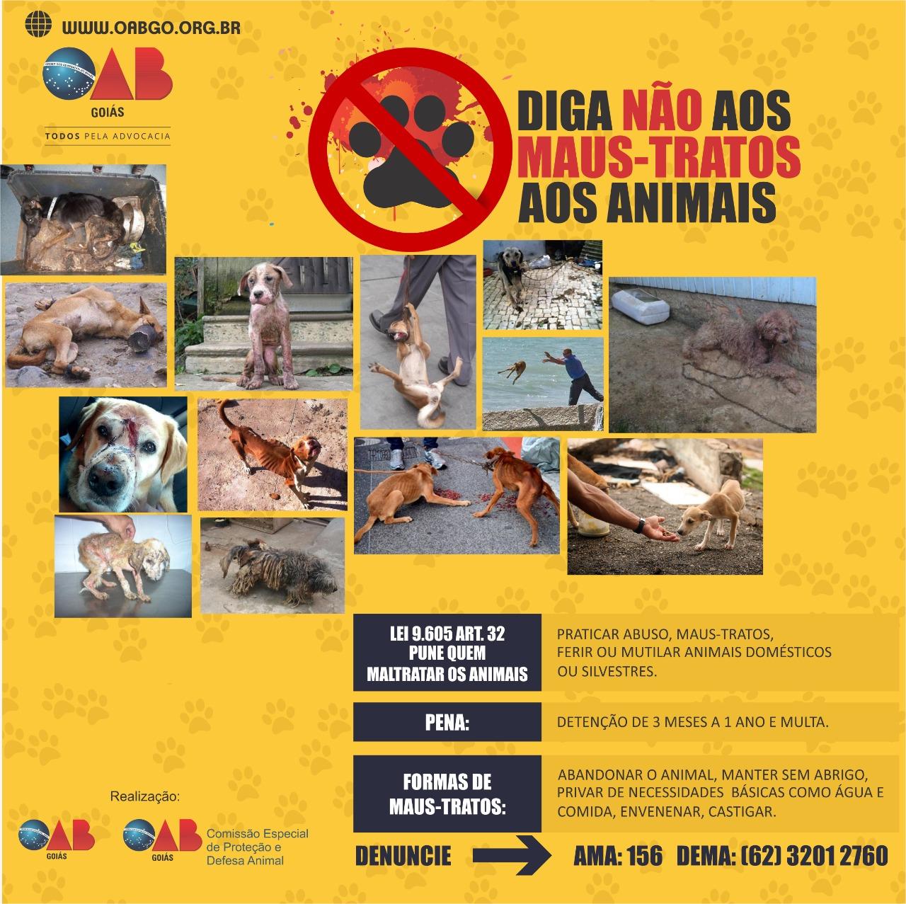 Campanha - Diga Não aos Maus-Tratos aos Animais