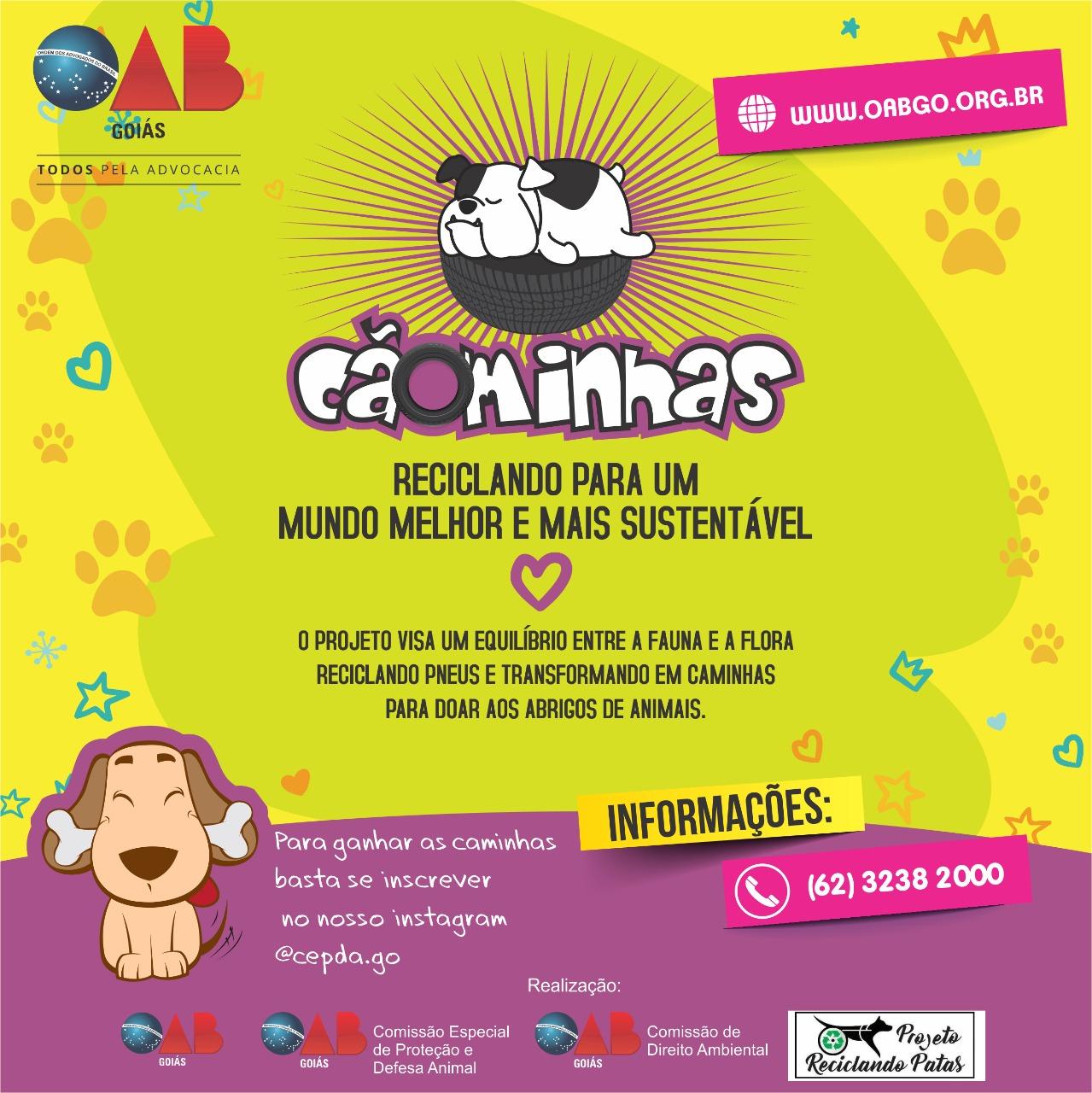 Campanha - Cãominhas