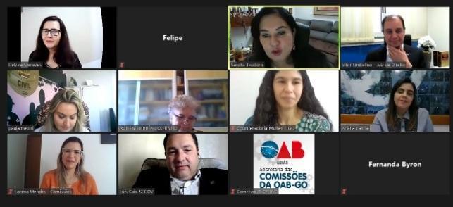 Grupo de estudos formado por OAB, TJ, Polícia Civil, Governo de Goiás e MP avalia participação da advocacia dativa nas demandas de violência doméstica